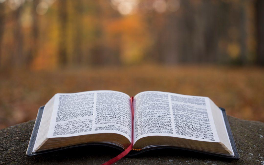 Testimony and Discipleship Tips